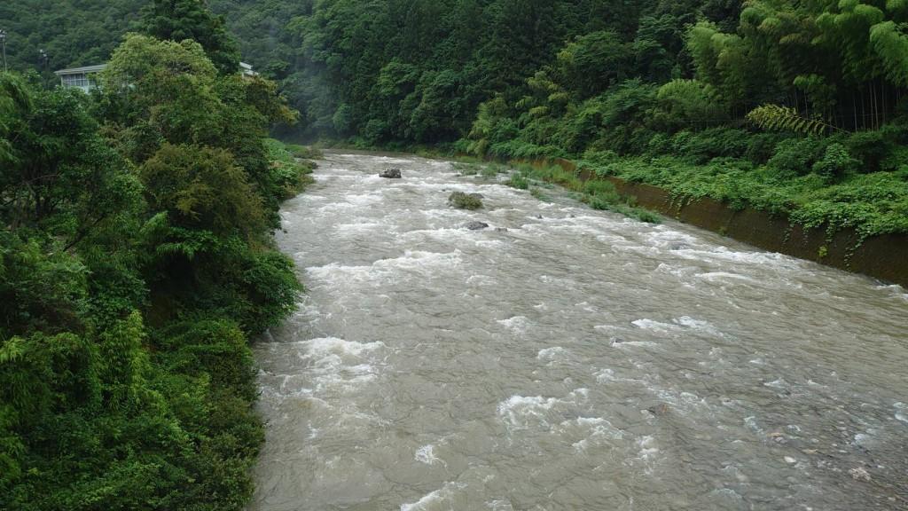 弘瀬橋から上流